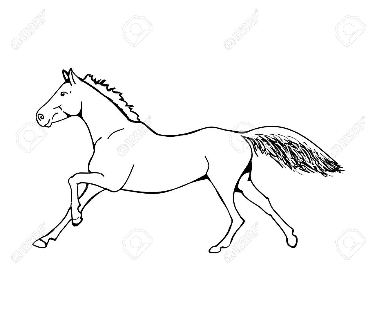 1300x1106 Graphic Image Of A Galloping Horse. The Outline Of A Horse