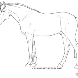 268x268 Horse Outline Coloring Page Archives