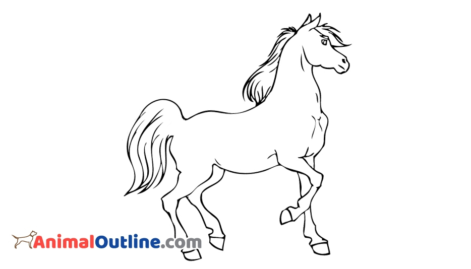 934x534 Outline Horse @
