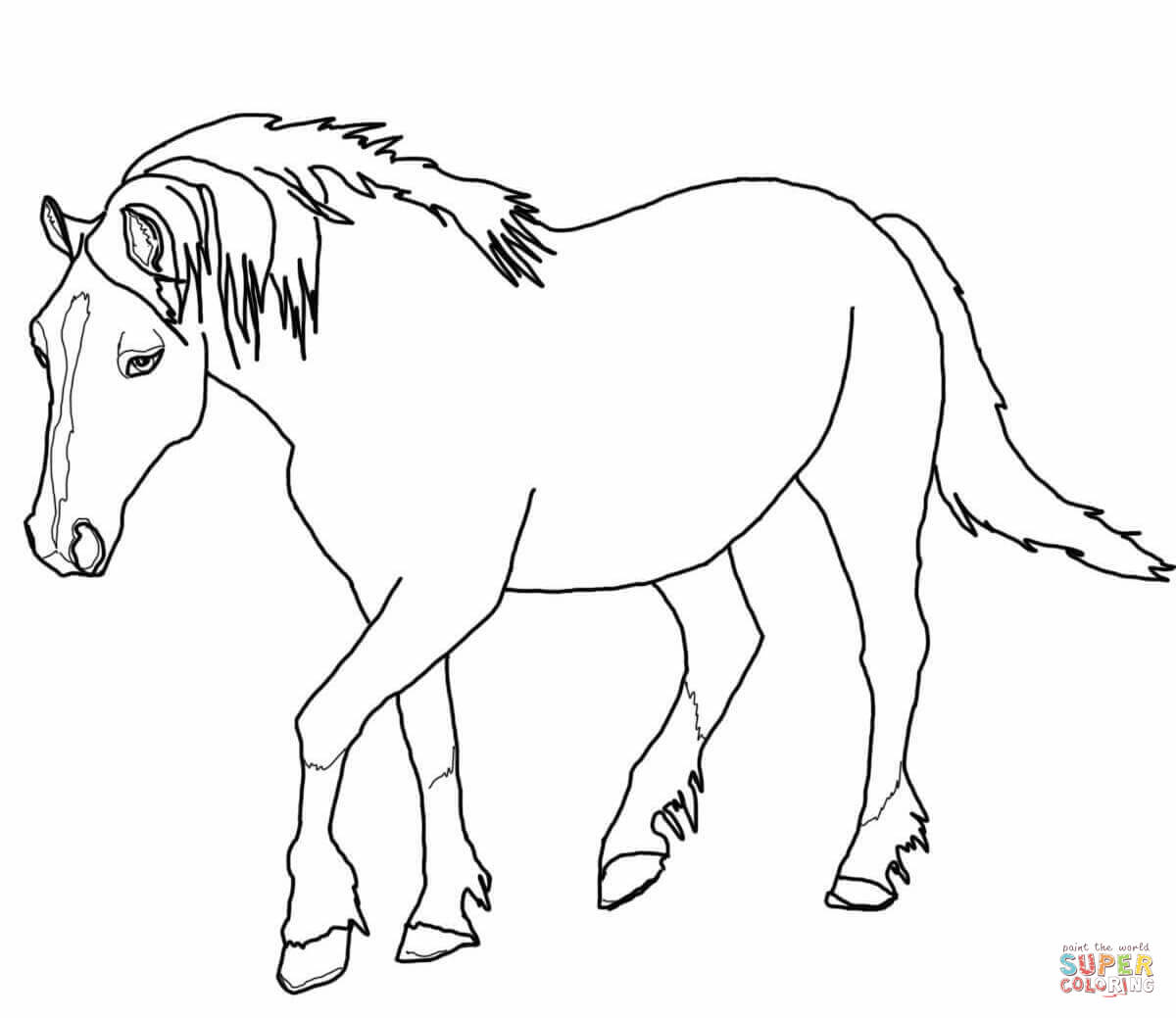 1200x1039 Palomino Welsh Horse Coloring Page Free Printable Coloring Pages