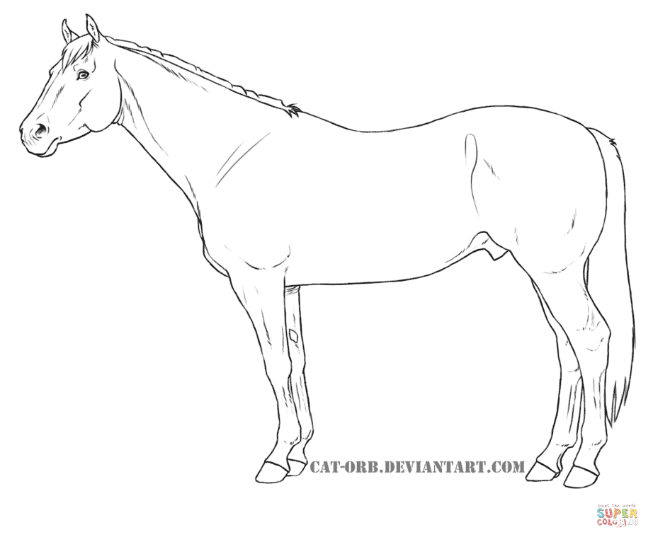 922x766 Quarter Horse Coloring Page Free Printable Pages