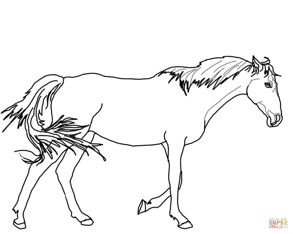 1200x958 Walking Thoroughbred Horse Coloring Page Free Printable