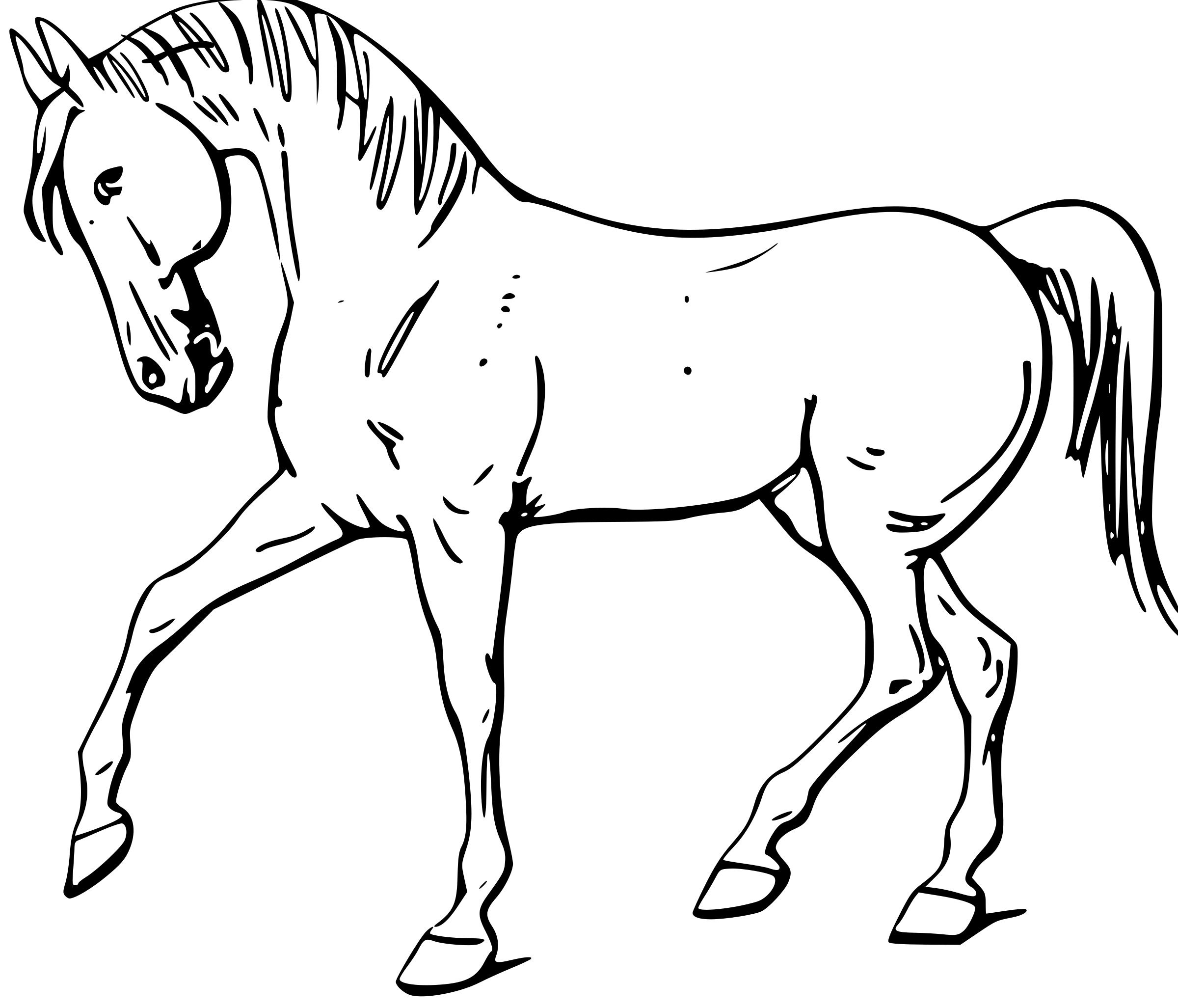 horse drawing outlines at getdrawings com free for personal use rh getdrawings com Western Horse Clip Art house outline clip art
