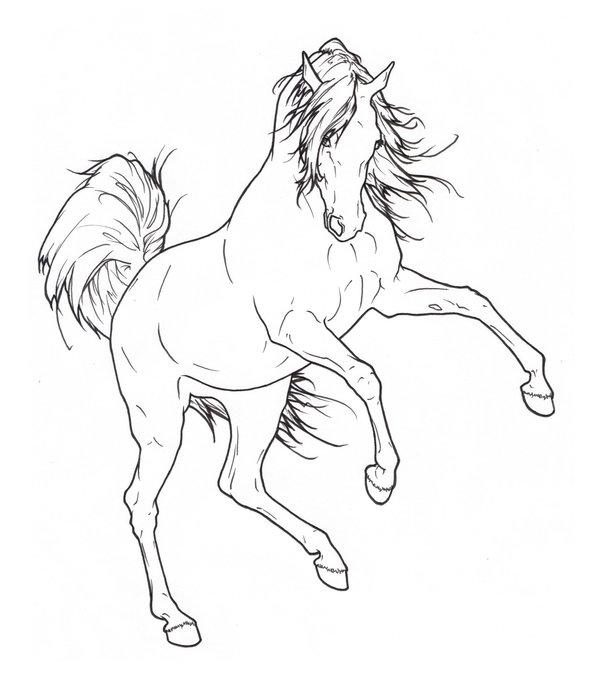 600x674 Drawn Horse Rearing