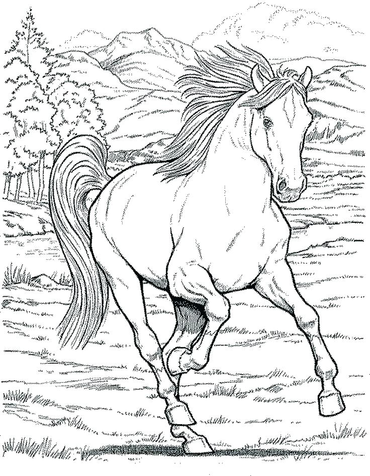 736x945 Entertaining Horseland Coloring Pages Print Horse Printable