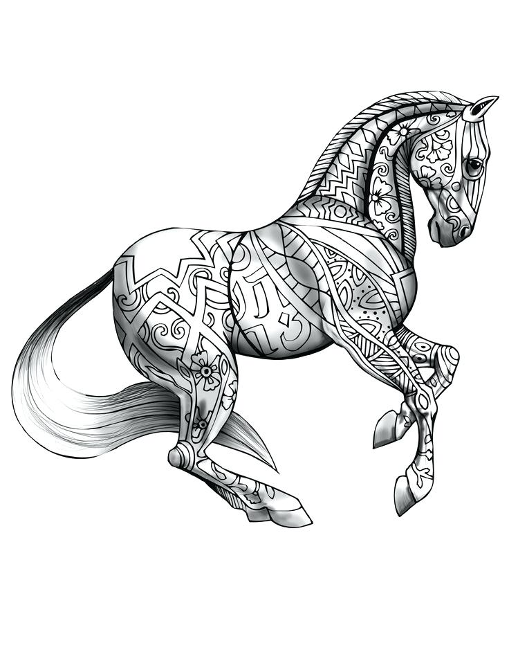 736x952 Horse Coloring Pages Drawing Unique Horse Coloring Pages Ideas