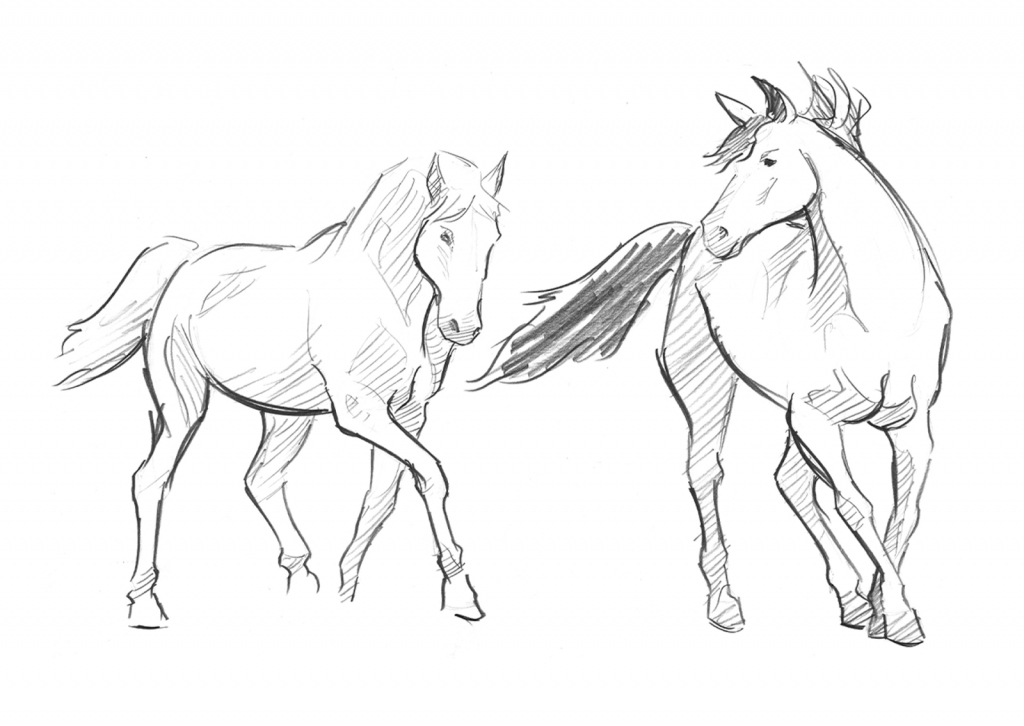 1024x726 Simple Horse Drawing