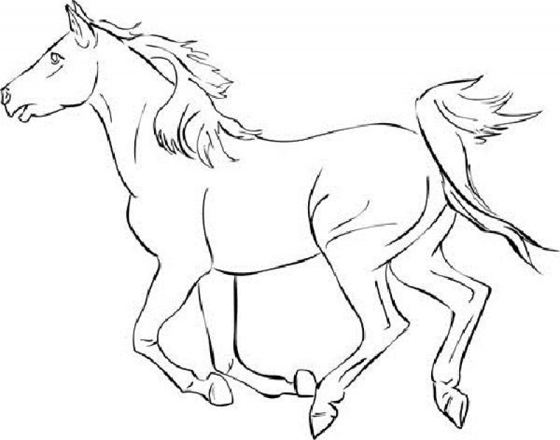 800x629 Coloring Pages Luxury Mustang Horse Coloring Pages Running Page