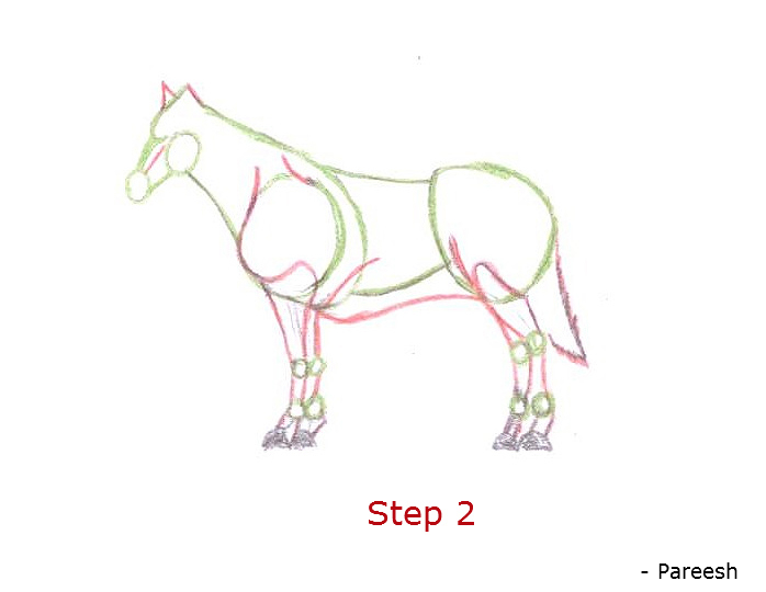 698x540 Fishing Chat How To Draw A Horse Step By Step