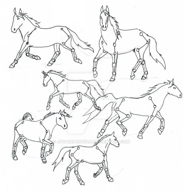 600x632 Horse Tutorial Full Body By Jotainsekavaa
