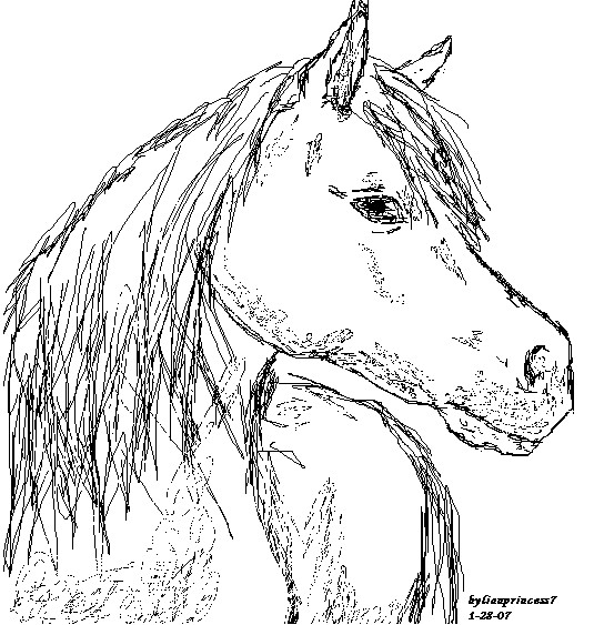 535x563 How To Draw A Horse