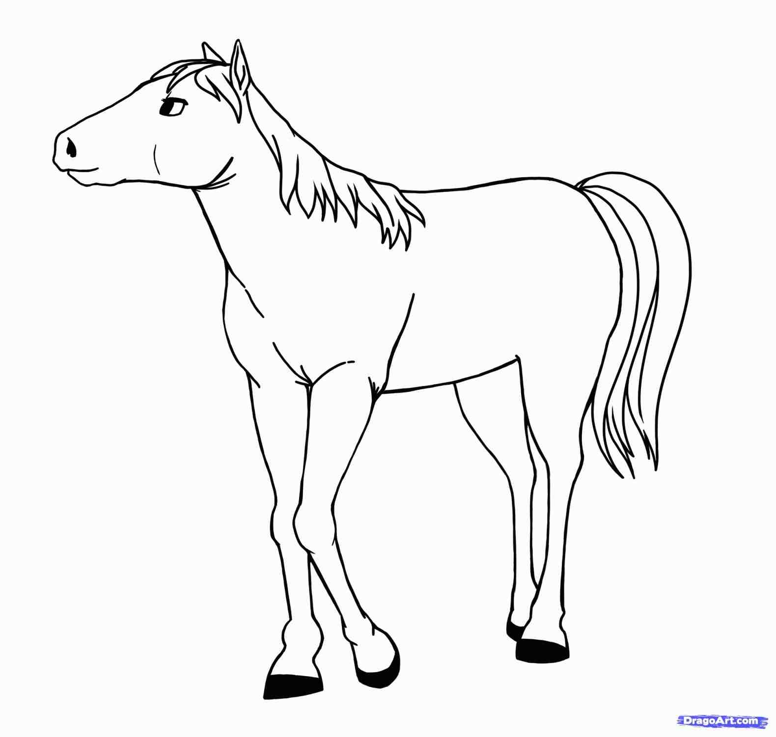 1580x1501 To How A Horse Step By Youtube Simple Steps With Pictures Wikihow