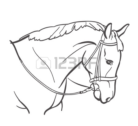 450x411 Horse Drawn Stock Photos. Royalty Free Business Images