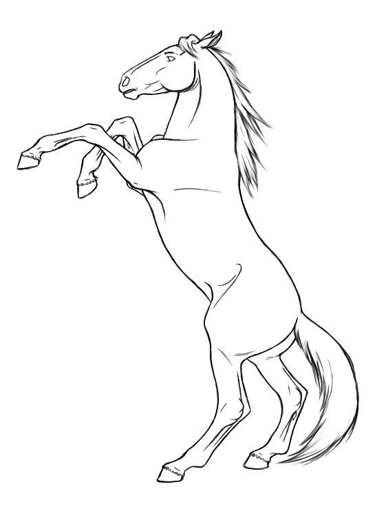 561x739 Drawn Horse Rearing
