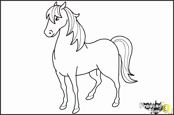 576x380 Easy Drawing Of A Horse Basdt Best Of How To Draw A Simple Horse
