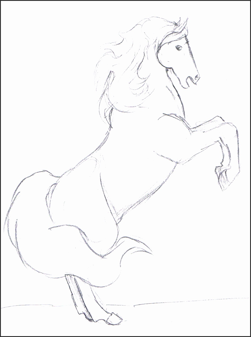 864x1159 Easy Drawing Of A Horse Rah8h New How To Draw A Horse Step By Step