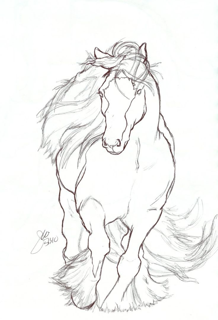 736x1078 Easy Horse Drawings In Pencil
