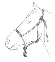 225x253 Natural Horse Magazine