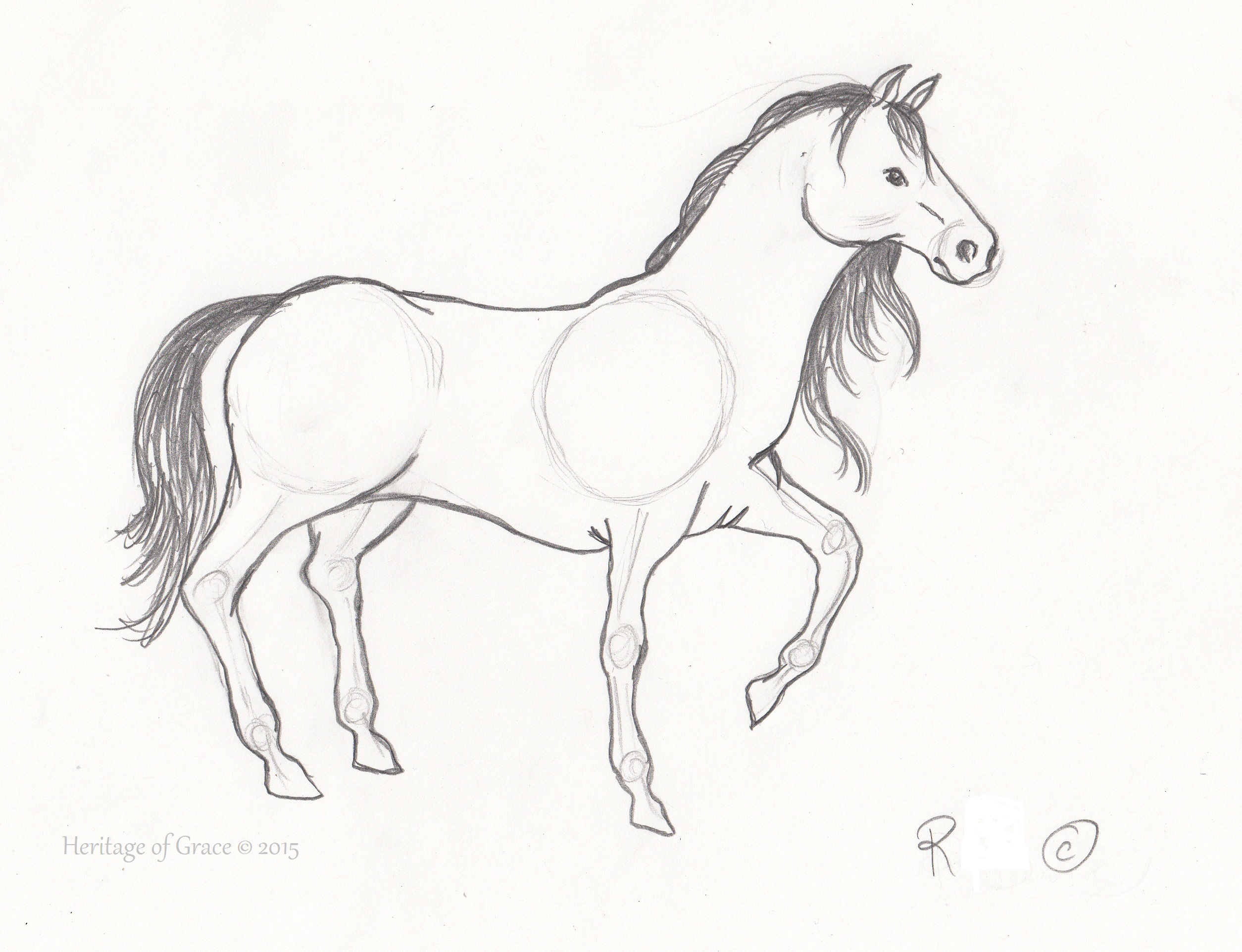 2509x1924 Sketches Of Horses Amazing Sketches Of Horse Beautiful And Easy