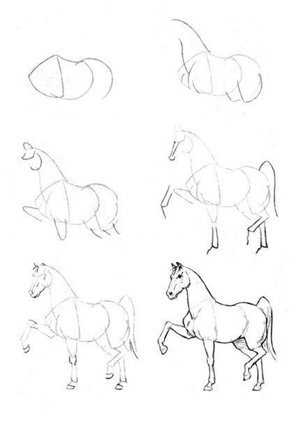 424x604 Draw, Horse