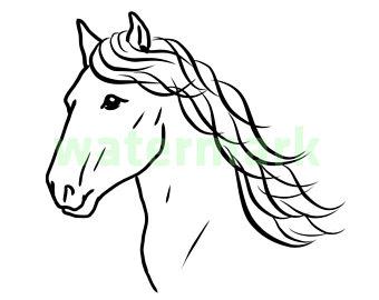 340x270 Head Of Horse Etsy