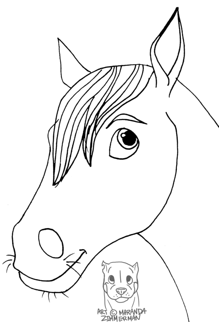 738x1083 Horse Face 1 By Coloran