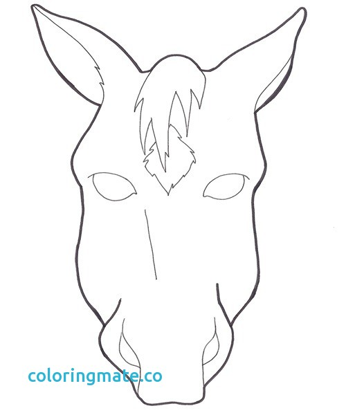 500x600 Horse Face Coloring Page Elegant How To Draw Kiwi Horse Face