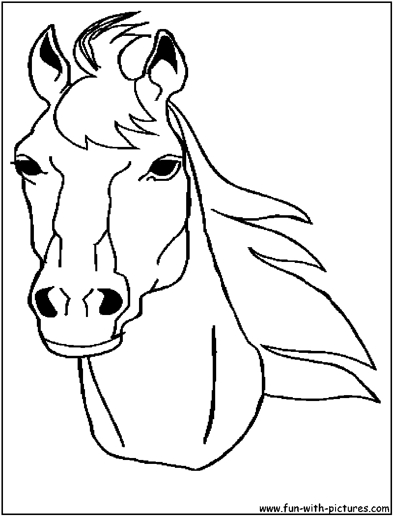 800x1050 Horse Head Coloring Page