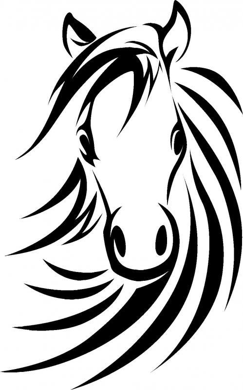 499x800 Afbeeldingsresultaat Voor Horse Line Drawing Art