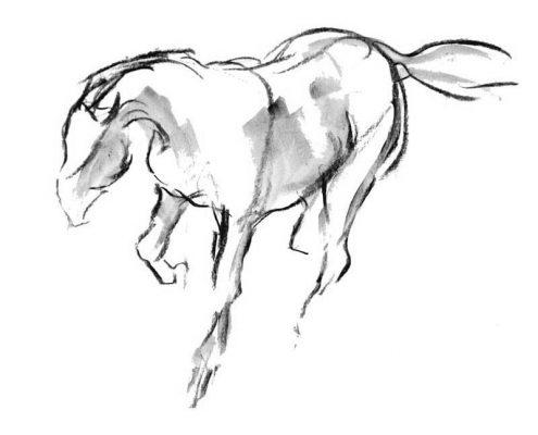 495x400 Equestrian Prints Fine Art Prints Diana Hand Equestrian Art