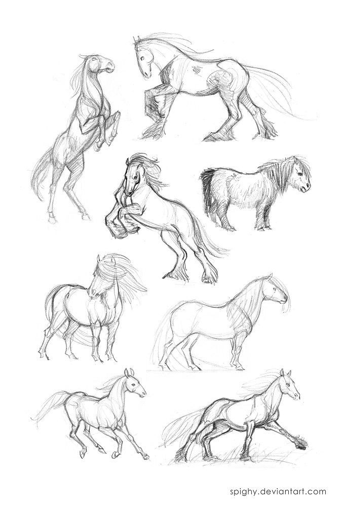 677x1000 Horse Quick Sketches Part2 By Spighy
