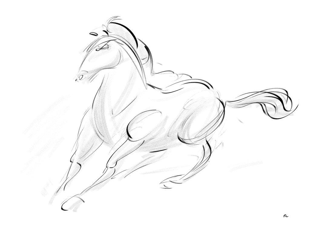 1024x768 Horsess21 By Wabea