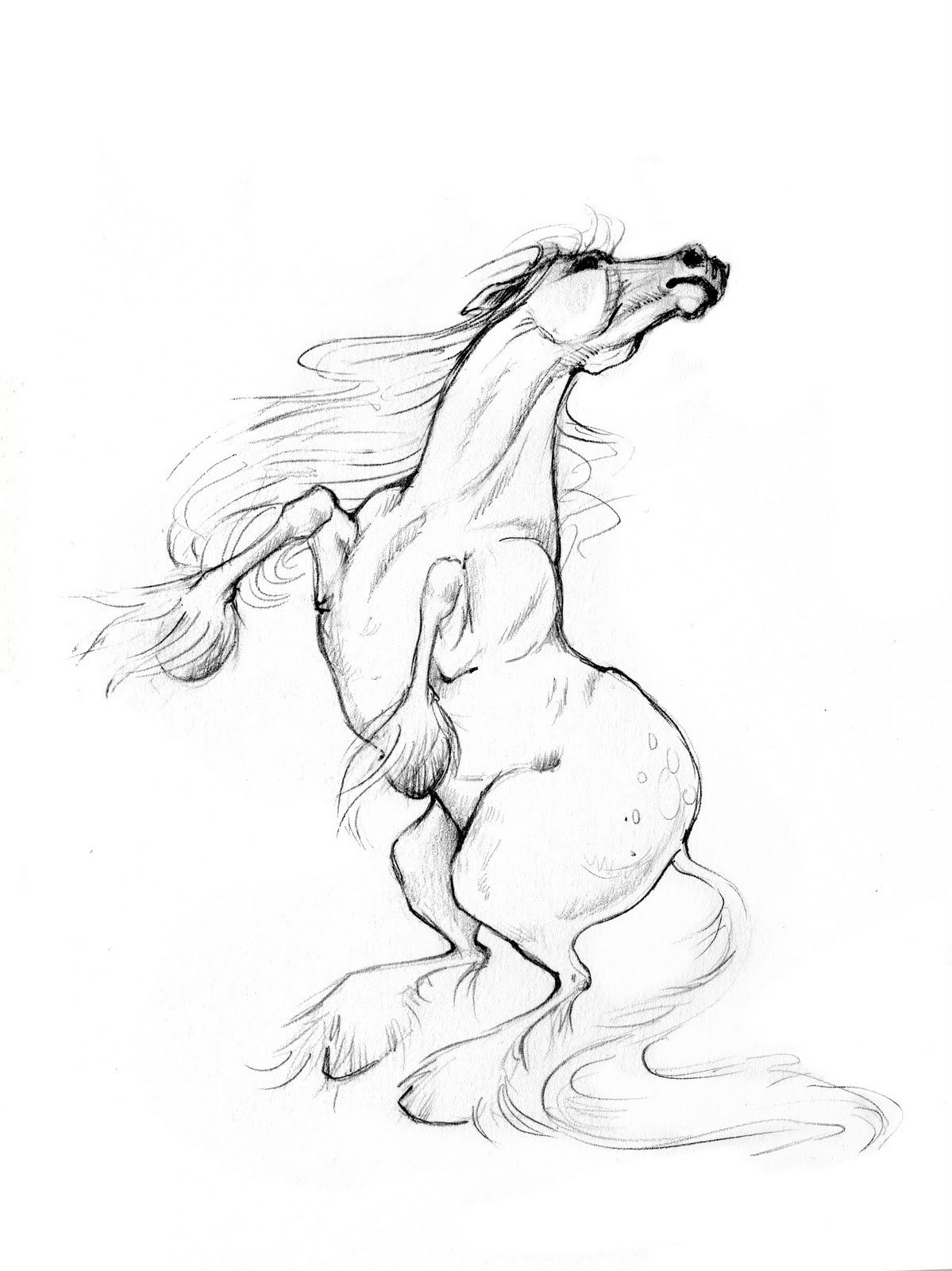 1199x1600 New Moon Year Of The Horse Brainstorm (Cont'D) Kelly Denato