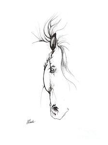 224x300 Andalusian Horse Drawings Fine Art America