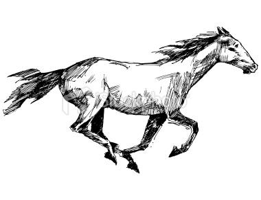 380x291 Galloping Horse Drawing