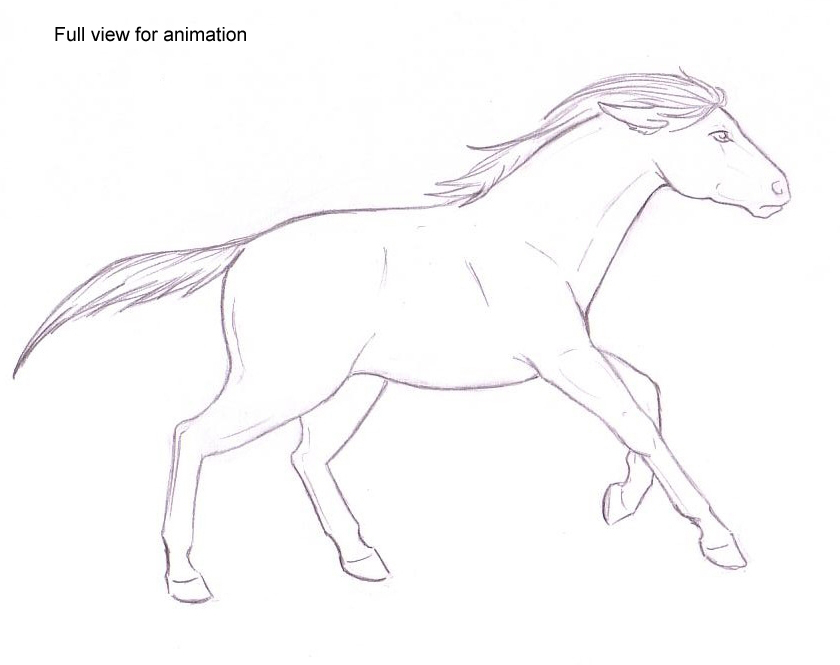 840x665 Galloping Horse By Maryakou