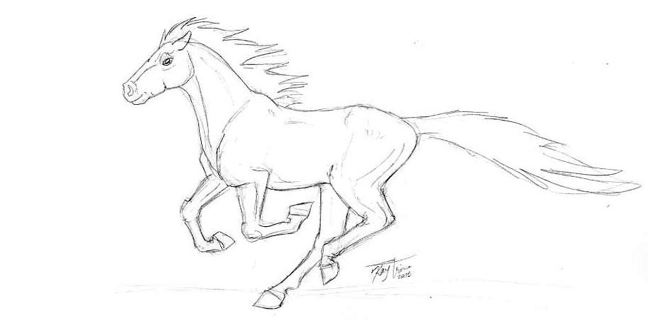 927x464 Galloping Horse By Poim