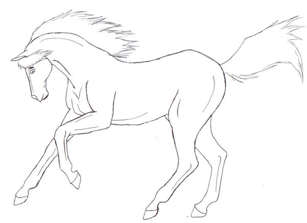 600x437 Galloping Horse Lineart By Angelkissedhorse