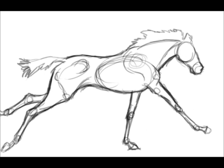1440x1080 Animation Study