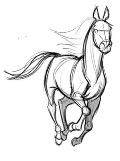 236x315 Image Result For Galloping Horses Drawings Copy Cat Drawings