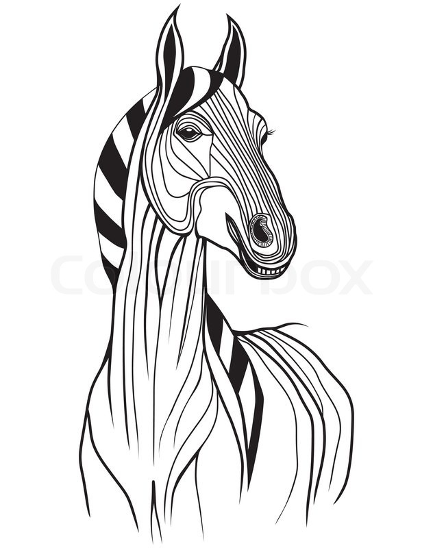 632x800 Horse Head Vector Animal Illustration For T Shirt. Sketch Tattoo