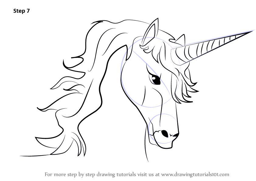 842x596 Learn How To Draw Unicorn Head (Unicorns) Step By Step Drawing