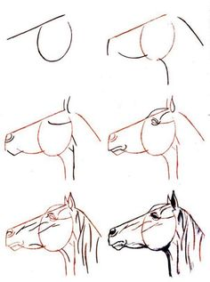 236x317 Designing Horse Pencil Drawings