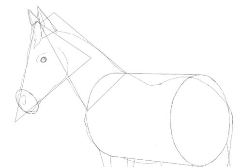 500x345 Horse Drawing Tutorial. A Three In One Free Lesson.