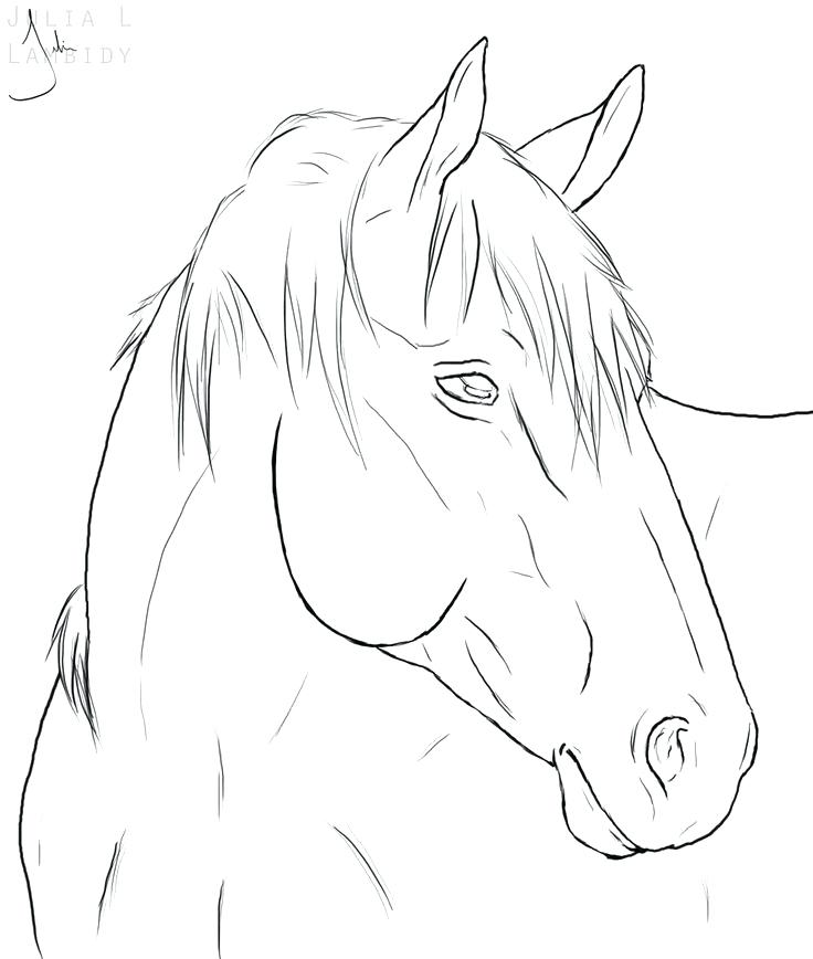 736x868 Simple Horse Coloring Pages Simple Frank Horse Coloring Pages