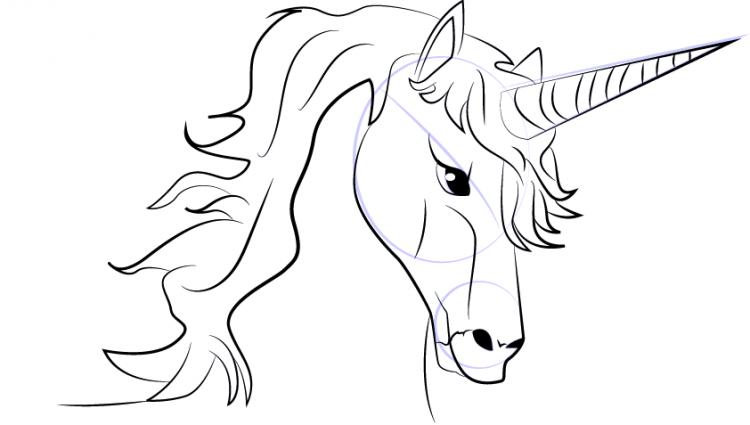 750x425 How To Draw A Unicorn Easy Learn How To Draw Unicorn Head Unicorns