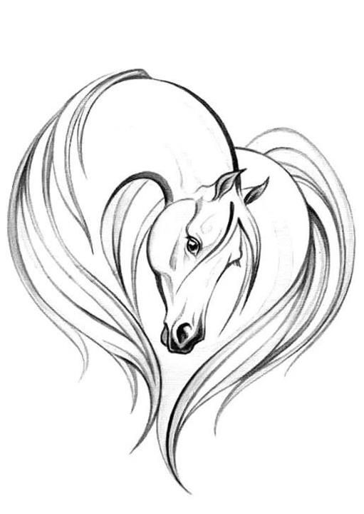 511x720 Drawn Night Horse Outline