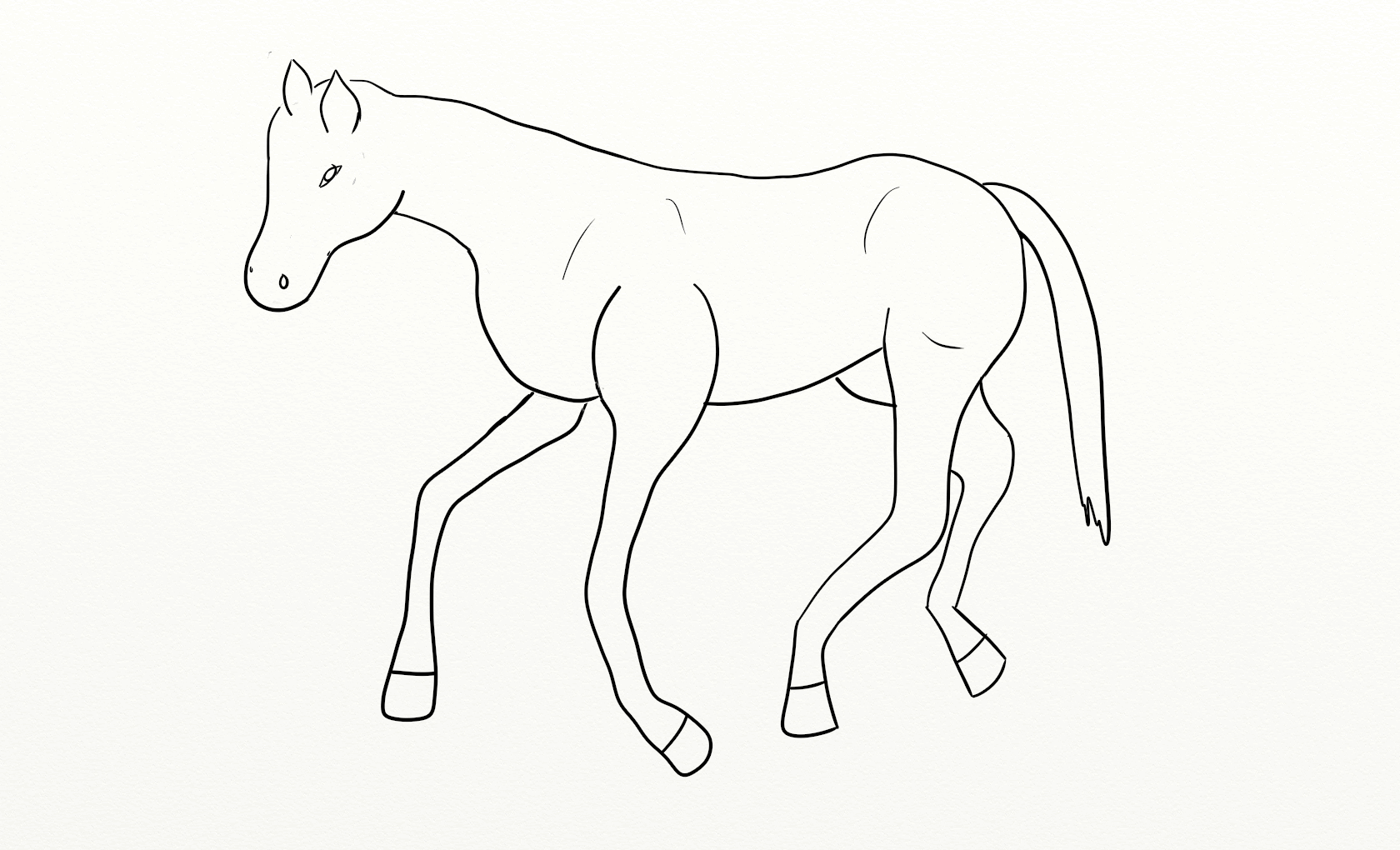 1680x1020 Animal Outline Drawings