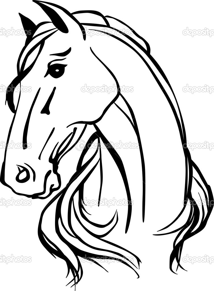 754x1024 Animals For Gt Horse Head Line Drawing Art Ideas
