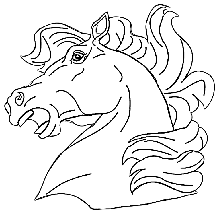 750x732 Horse Head Coloring Pages